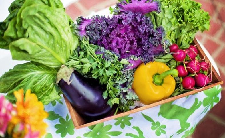 自然栽培野菜